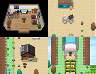 Pokemon RT B/W 2011