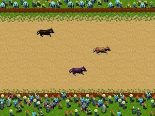 Spelen Horse Park Fantasy