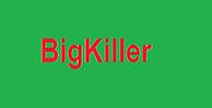 BigKiller(DEMO)