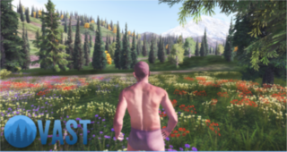 Play Vast Survival