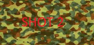 Играть Shot 2 (Trial)