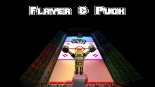 Bermain Flayer & Puck