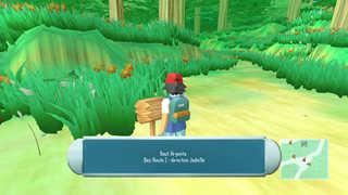 Pokemon Accel