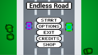 Spielen Endless Road